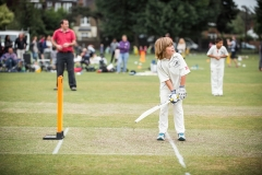 Batsman steps up to the crease