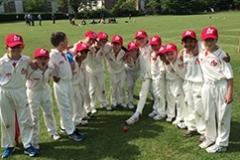 Summer Cricket Academy 2016